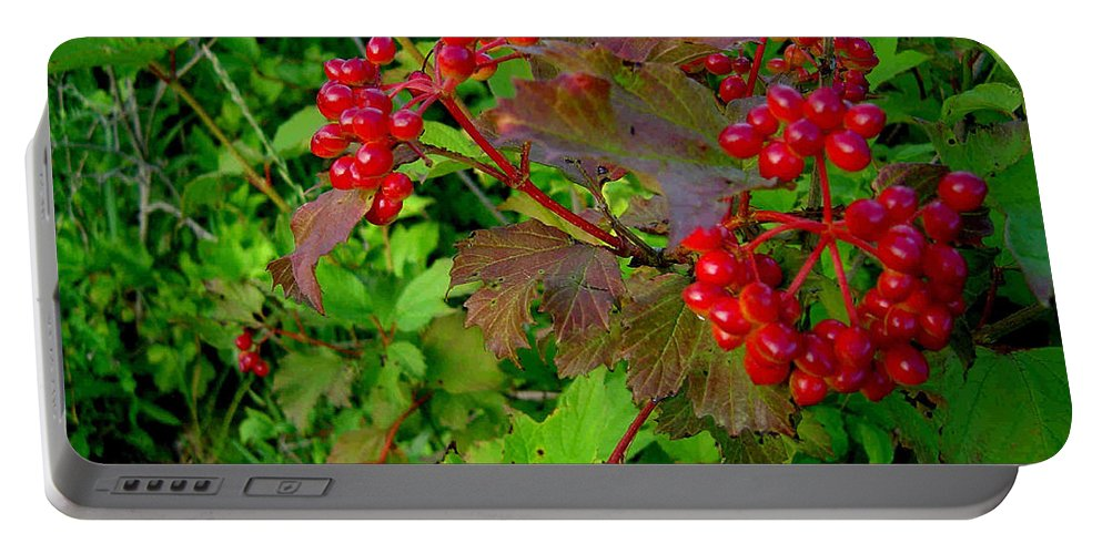 Hi Bush Cranberries Berries Portable Battery Charger featuring the photograph Hi Bush Cranberry Close Up by Joanne Smoley