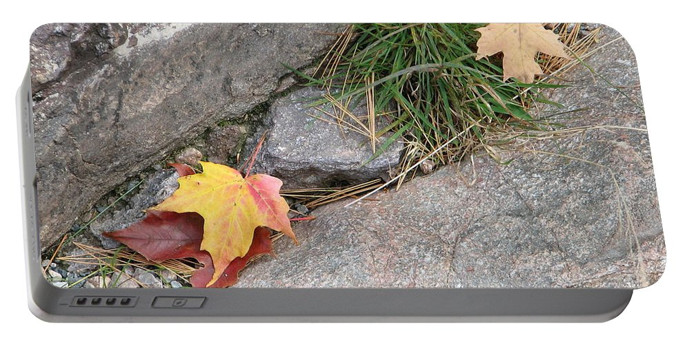Fall Portable Battery Charger featuring the photograph Hiding by Kelly Mezzapelle