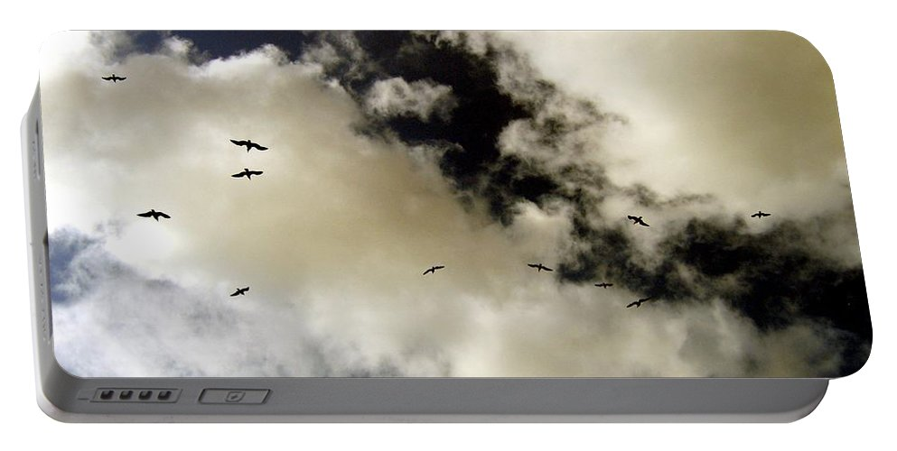 Seagulls Portable Battery Charger featuring the photograph High Flight by Will Borden