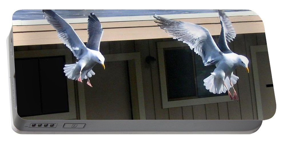 Seagulls Portable Battery Charger featuring the photograph High Spirits by Will Borden