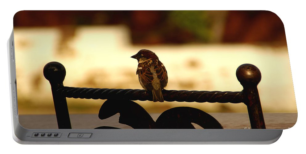 Bird Portable Battery Charger featuring the photograph His Eye Is On The Sparrow by Linda Shafer