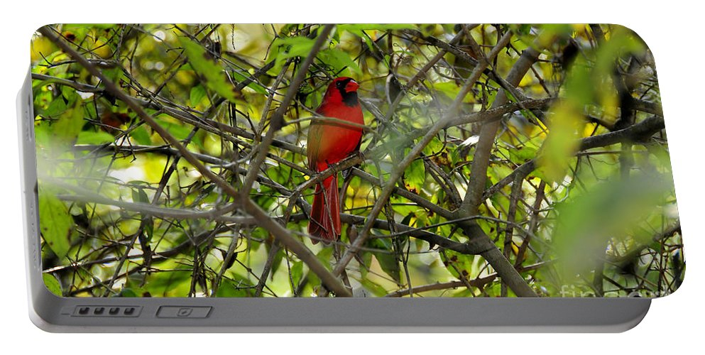 Red Portable Battery Charger featuring the photograph His Majesty by David Lee Thompson