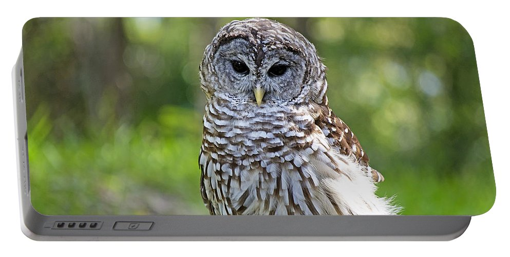 Owl Portable Battery Charger featuring the photograph Hoo Are You by Kenneth Albin