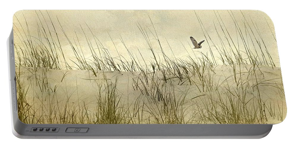 Seascape Portable Battery Charger featuring the photograph Hoo's Who by Diana Angstadt