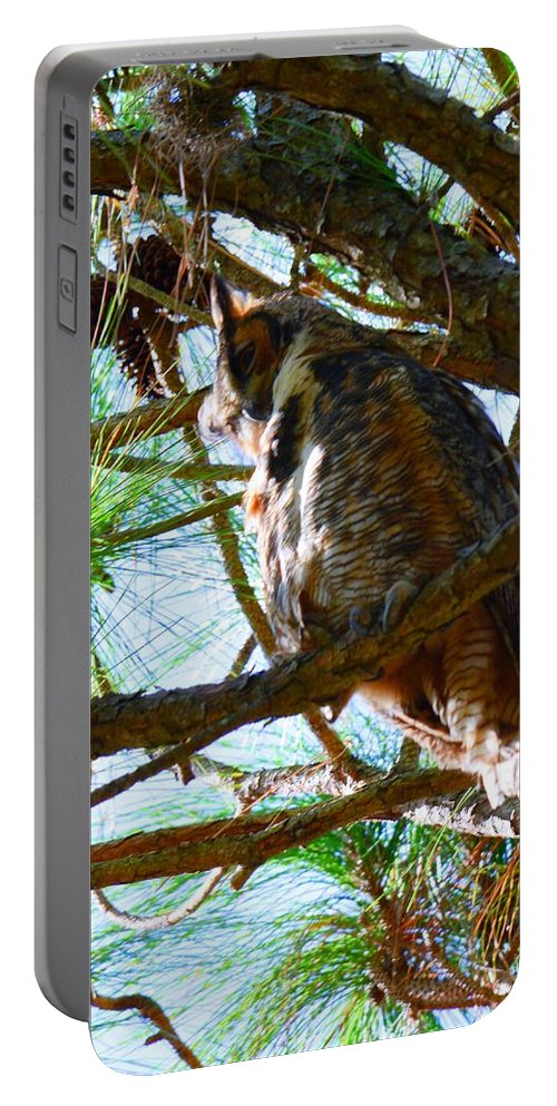 Hoot Is Down There Portable Battery Charger featuring the photograph Hoot Is Down There? by Lisa Wooten