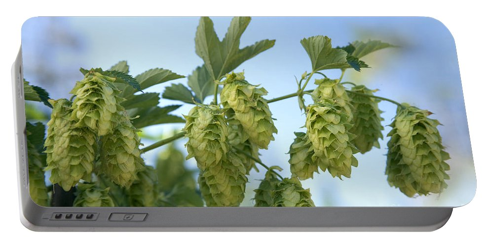 Hop Cone Portable Battery Charger featuring the photograph Hop Cones by Inga Spence
