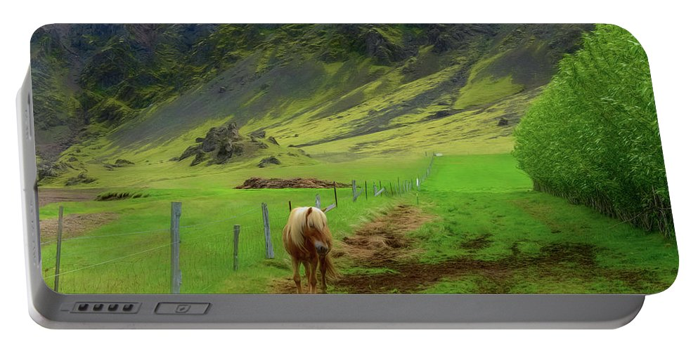 Horse Portable Battery Charger featuring the photograph Horse On The South Iceland Coast by Jeffrey Hamilton