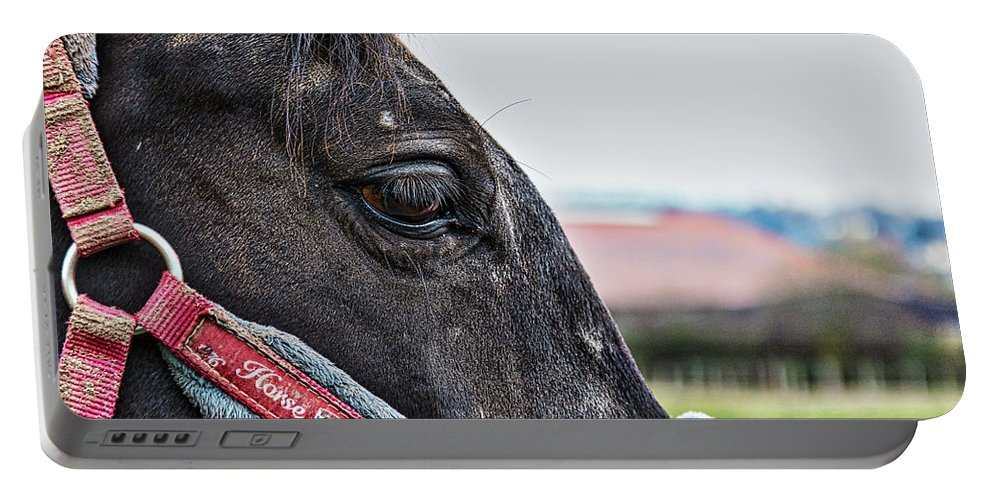 Animals Portable Battery Charger featuring the photograph Horse Riding Horse by Rabiri Us