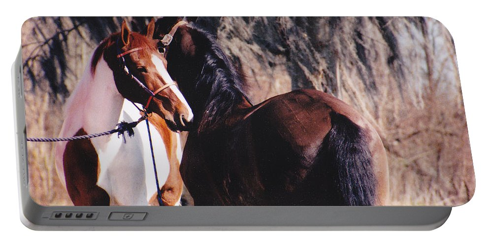 Horses Portable Battery Charger featuring the photograph Horse Talk by Michelle Powell
