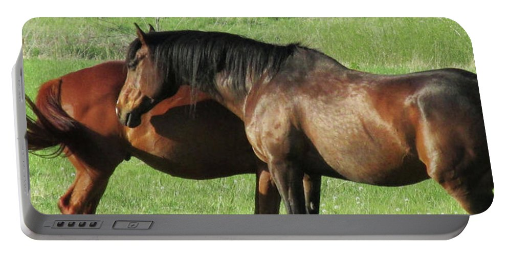 Horses Portable Battery Charger featuring the photograph Horses by Donna Tanael