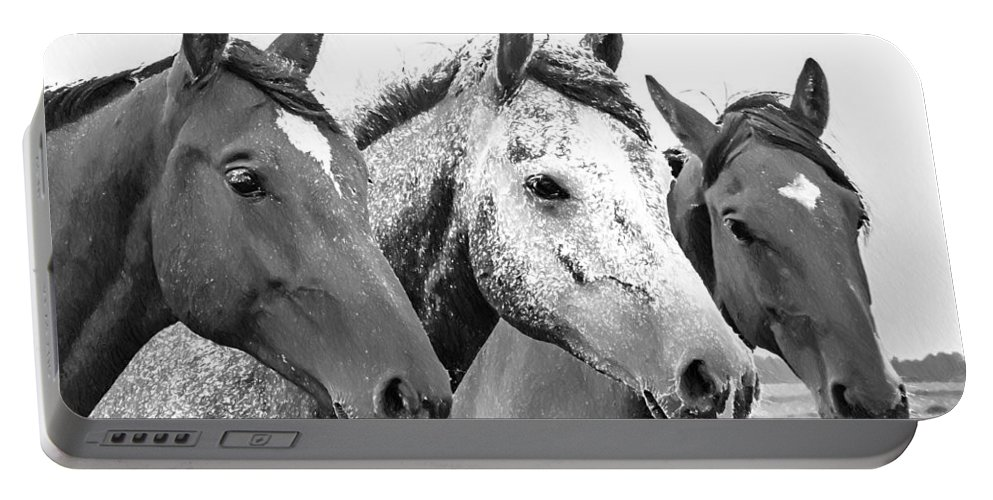 Horses Portable Battery Charger featuring the painting Horses - Id 16217-202749-4749 by S Lurk