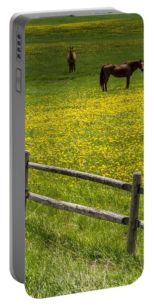 Finger Lakes Portable Battery Charger featuring the photograph Horses In A Field by Ray Sheley