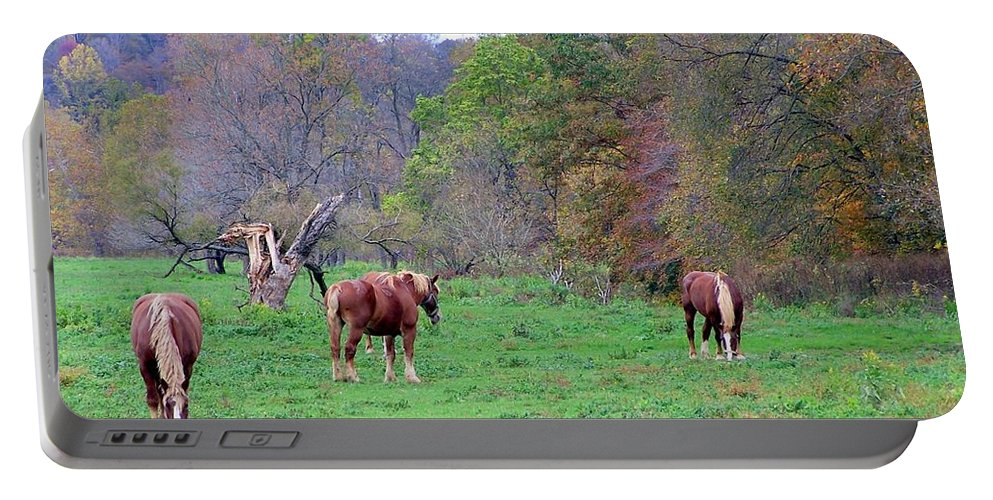 Horses Portable Battery Charger featuring the photograph Horses In Autumn Amish Country by Charlene Cox