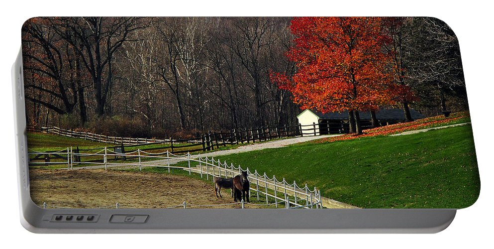 Autumn Portable Battery Charger featuring the photograph Horses In Autumn by Joan Minchak