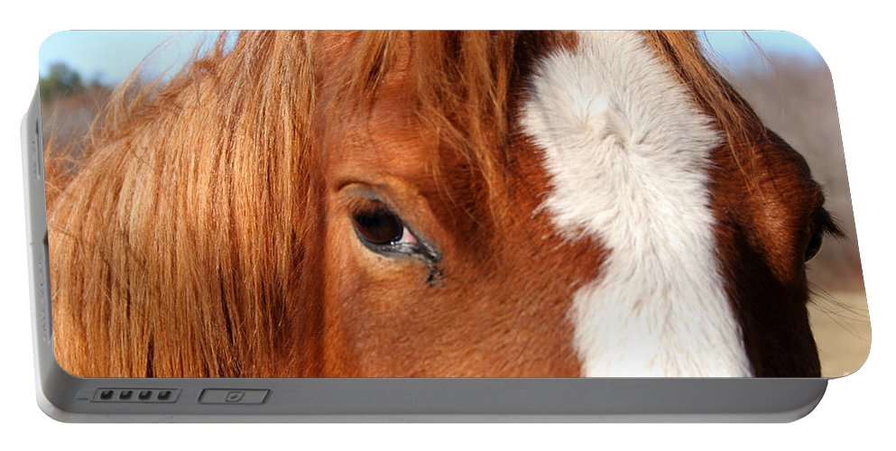 Horse Portable Battery Charger featuring the photograph Horse's Mane by Thomas Marchessault