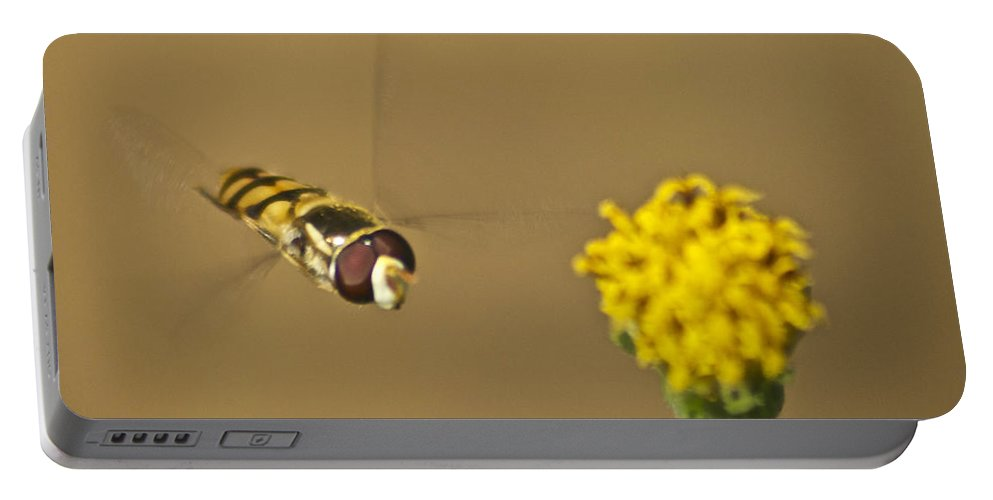 Wildlife Portable Battery Charger featuring the photograph Hoverfly by Michael Peychich