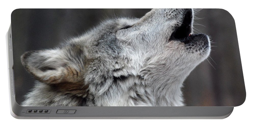 Lakota Portable Battery Charger featuring the photograph Howl by Richard Bryce and Family