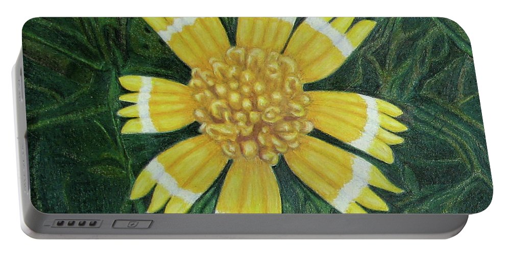 Fuqua - Artwork Portable Battery Charger featuring the drawing Huisache Daisy by Beverly Fuqua