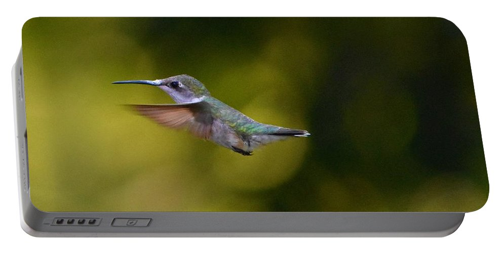 Birds Portable Battery Charger featuring the photograph Humming In West Virginia by Lisa Kleiner