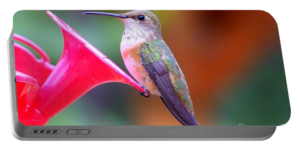Bird Portable Battery Charger featuring the photograph Hummingbird - 18 by Mary Deal
