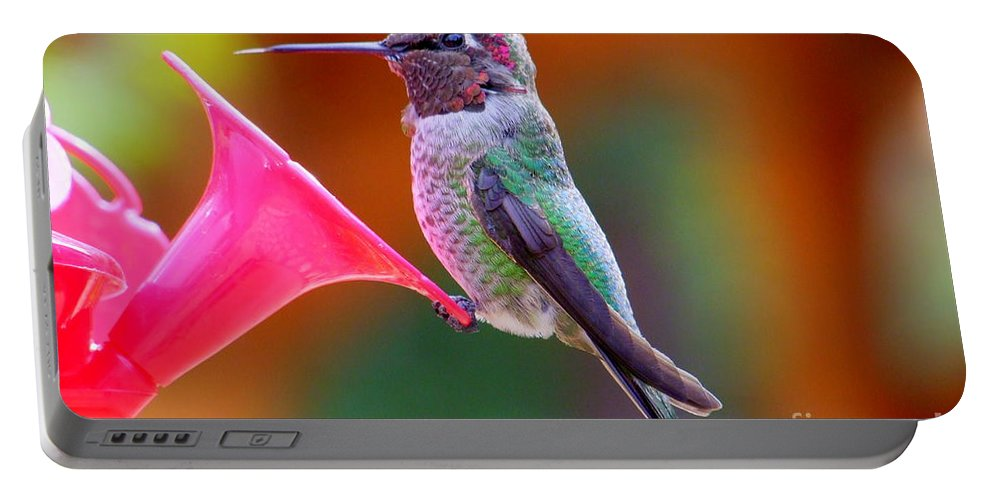 Bird Portable Battery Charger featuring the photograph Hummingbird - 28 by Mary Deal