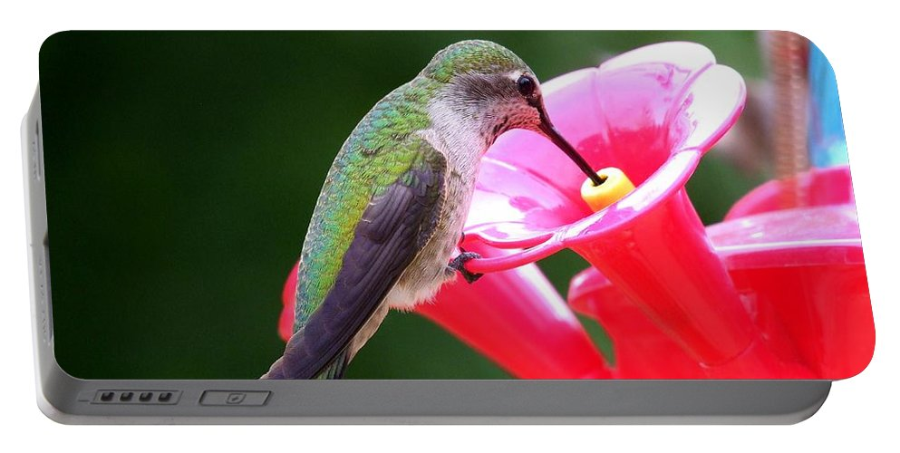 Red Portable Battery Charger featuring the photograph Hummingbird 33 by Mary Deal