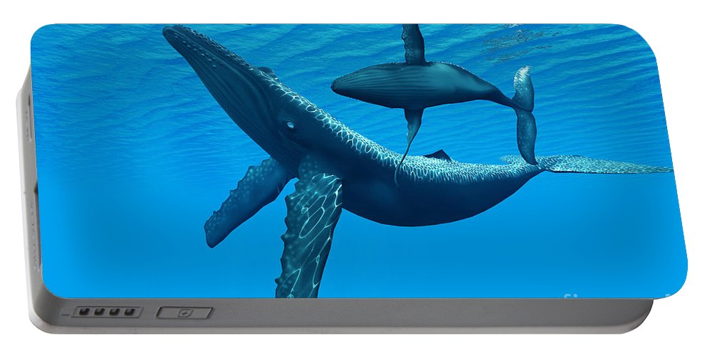 Humpback Whale Portable Battery Charger featuring the painting Humpback Whale Bonding by Corey Ford