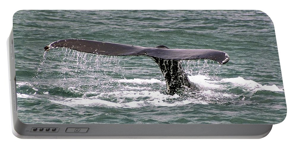 Humpback Whale Portable Battery Charger featuring the photograph Humpback Whale Flute Alaska by NaturesPix