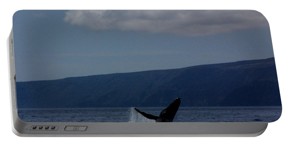 Whale Portable Battery Charger featuring the photograph Humpback Whale by Sarah Houser
