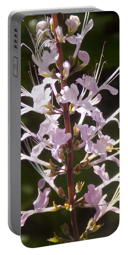 Purple Portable Battery Charger featuring the photograph Hurricane Lilies by Sarah Barba