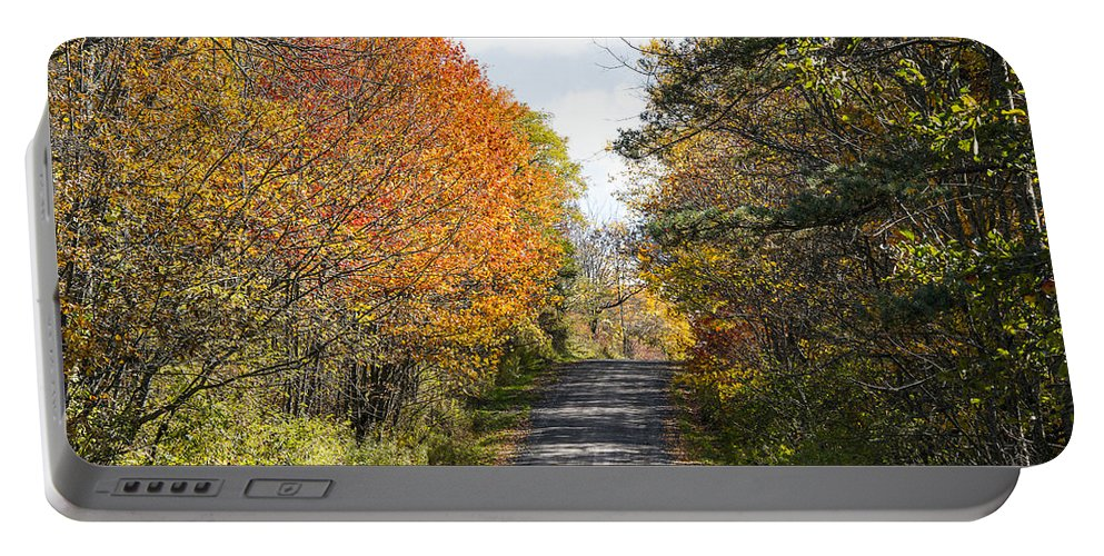 New York Fall Foliage Portable Battery Charger featuring the photograph Huyck Preserve Fall by George Fredericks