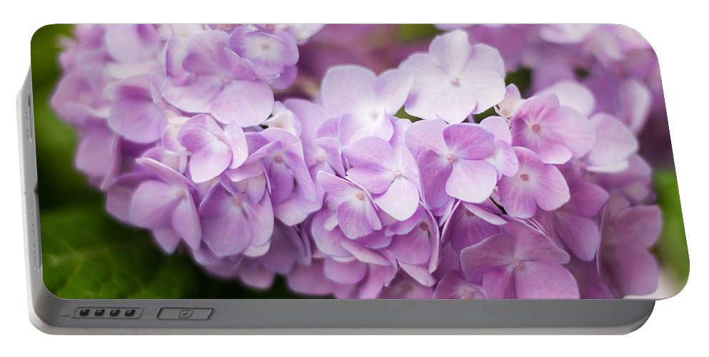 Hydrangea Portable Battery Charger featuring the photograph Hydrangea In Purple by Parker Cunningham