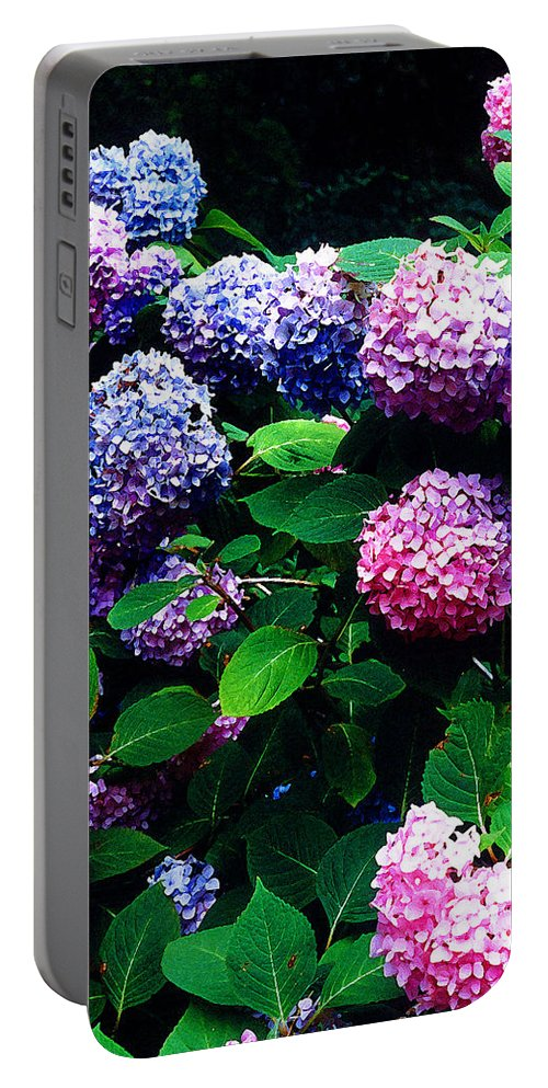 Flowers Portable Battery Charger featuring the photograph Hydrangeas by Nancy Mueller