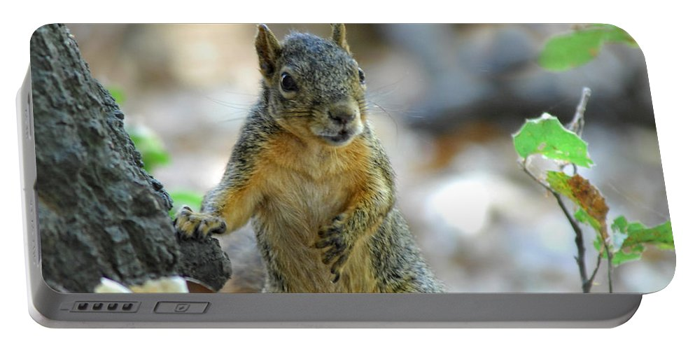 Squirrel Portable Battery Charger featuring the photograph I Ate Too Many Nuts by Donna Blackhall