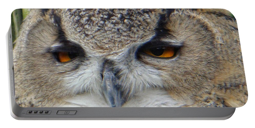 Owl Portable Battery Charger featuring the photograph I Ate Too Much by Donna Blackhall