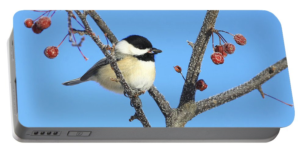 Bird Portable Battery Charger featuring the photograph I Got My Seed by Deborah Benoit