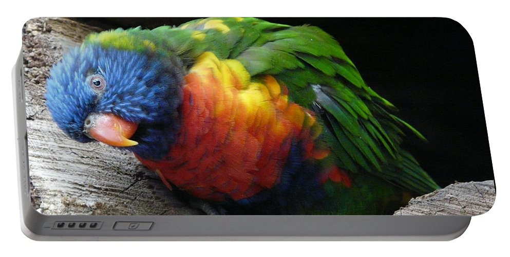 Bird Portable Battery Charger featuring the photograph I Hear You by Valerie Ornstein