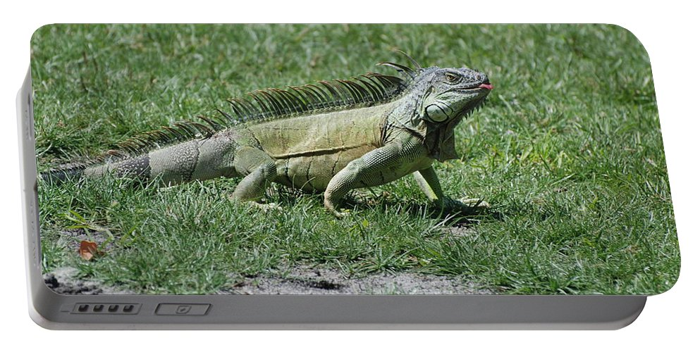 Macro Portable Battery Charger featuring the photograph I Iguana by Rob Hans