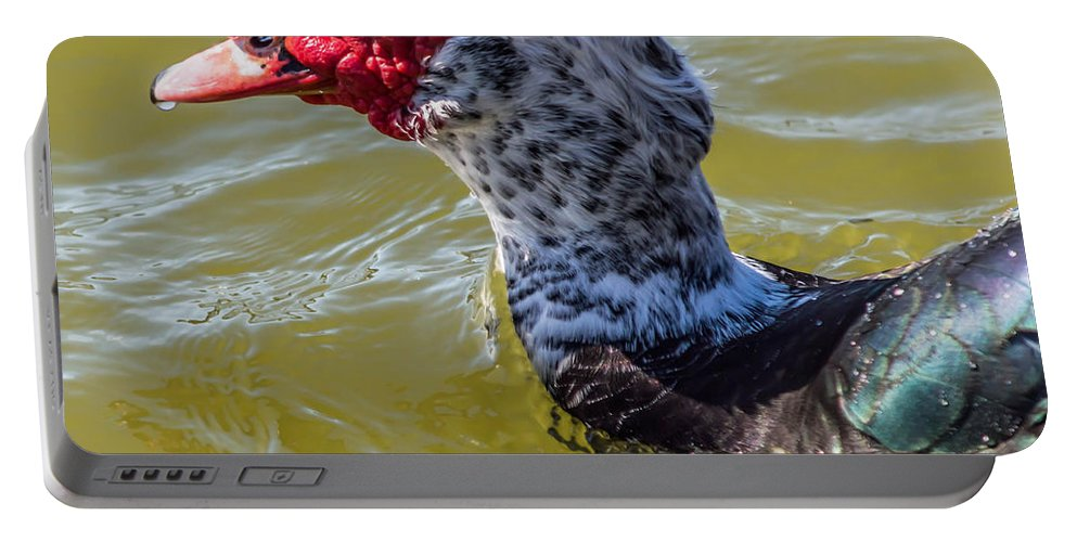 Muscovy Portable Battery Charger featuring the photograph I See You There by Leticia Latocki