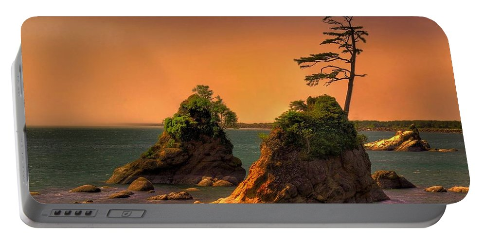 Landscape Portable Battery Charger featuring the photograph I Stand Corrected by John Absher