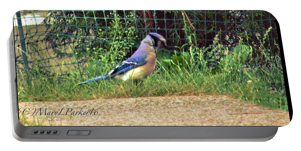 Bluejay Portable Battery Charger featuring the photograph I Walk Alone by MaryLee Parker
