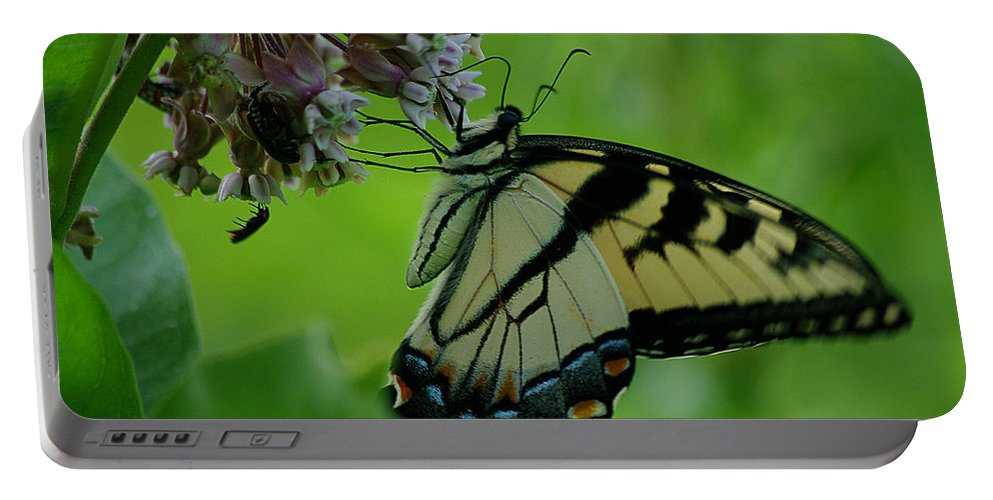Jenny Gandert Portable Battery Charger featuring the photograph I Want To Be A Butterfly by Jenny Gandert
