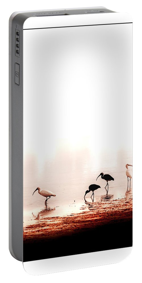 Ibis Portable Battery Charger featuring the photograph Ibis by Mal Bray