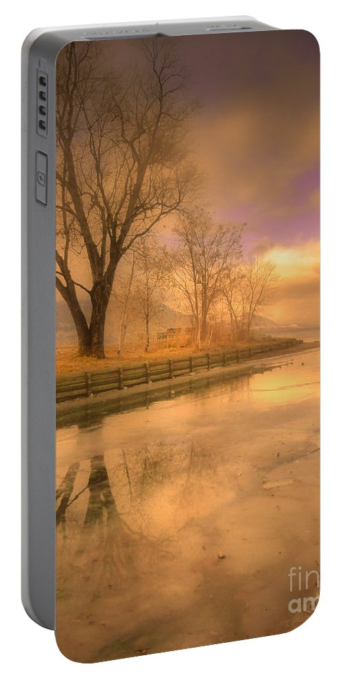 Tree Portable Battery Charger featuring the photograph Ice And Light by Tara Turner