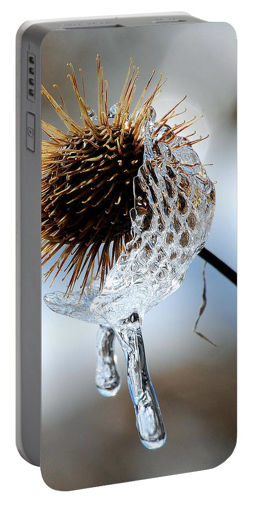 Nature Portable Battery Charger featuring the photograph Ice On Burdox by Lisa Kane