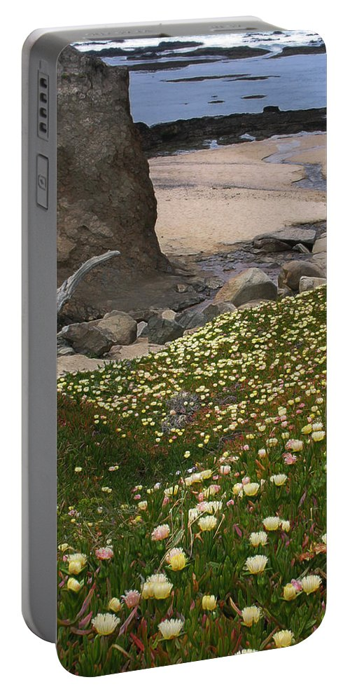 Landscape Portable Battery Charger featuring the photograph Ice Plants On Moss Beach by Karen W Meyer