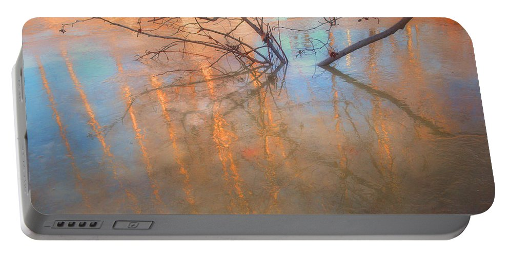 Ice Portable Battery Charger featuring the photograph Ice Reflections 2 by Tara Turner