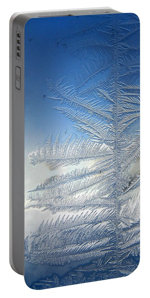 Ice Portable Battery Charger featuring the photograph Ice Tree by Rhonda Barrett