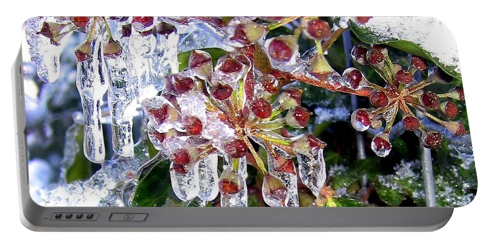 Iced Ivy Portable Battery Charger featuring the photograph Iced Ivy by Will Borden