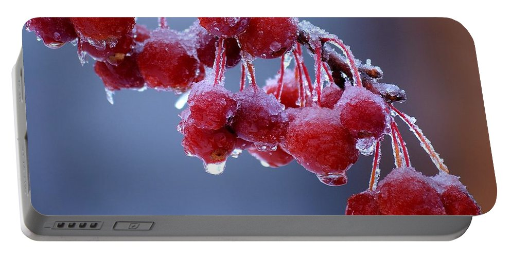 Winter Portable Battery Charger featuring the photograph Icy Berries by Lisa Kane
